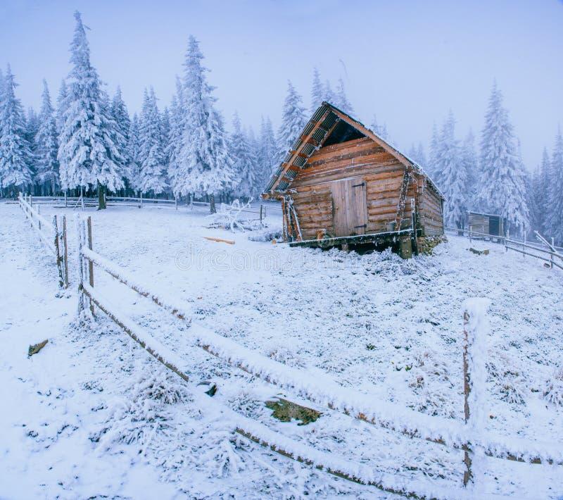 Kabin i bergen i vinter royaltyfria foton