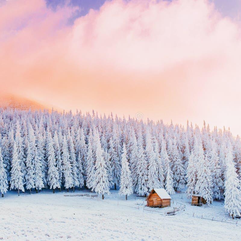 Kabin i bergen i vinter arkivfoto