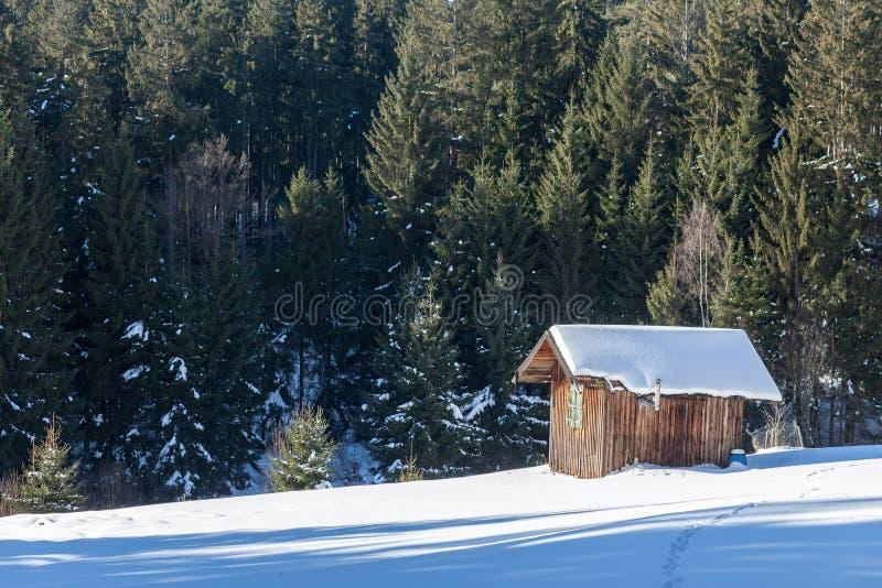 Kabina w zimie z śniegiem na wzgórzu w lesie zdjęcia royalty free