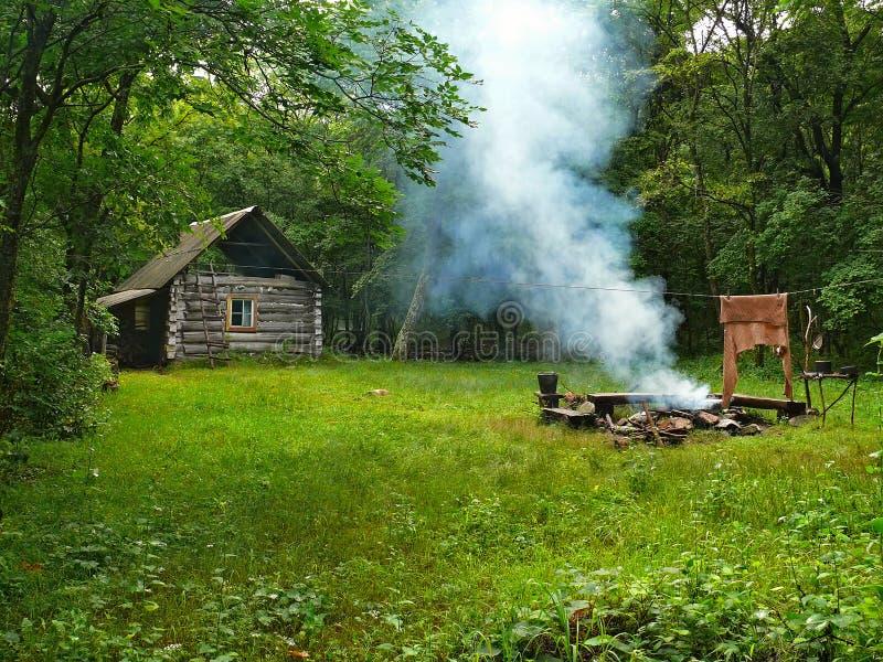 Kabine im Wald stockfotografie