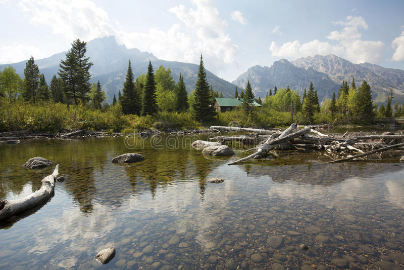 Kabine und Treibholz am Pappel-Nebenfluss, Jackson Hole, Wyoming lizenzfreie stockfotos