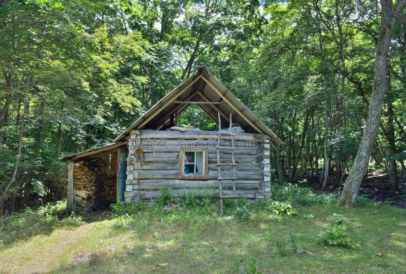 Kabine in Wald 2 lizenzfreie stockfotos