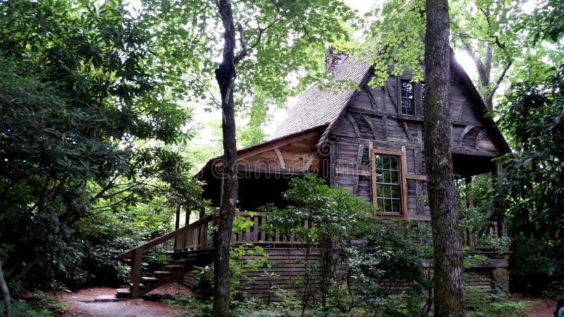 Kabinen-Wiege des Forstwirtschafts-North Carolina stockbilder