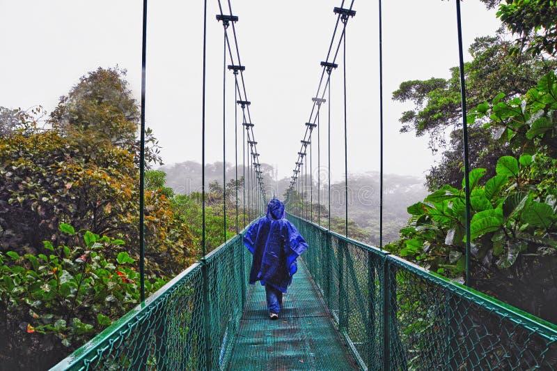 Kabinendachweg in Costa Rica lizenzfreie stockbilder