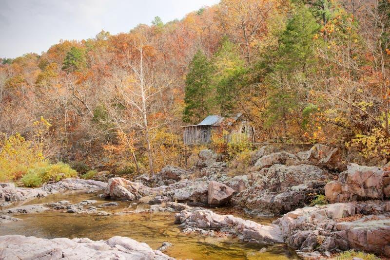 kabinowi lasowi starzy osadnicy obraz royalty free