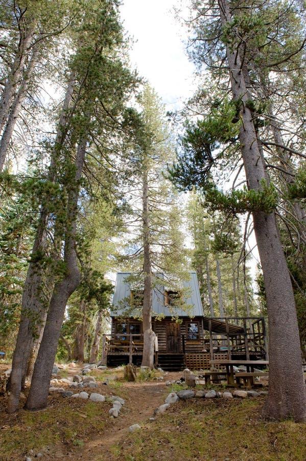 kabinowy lasowy sceniczny zdjęcia stock