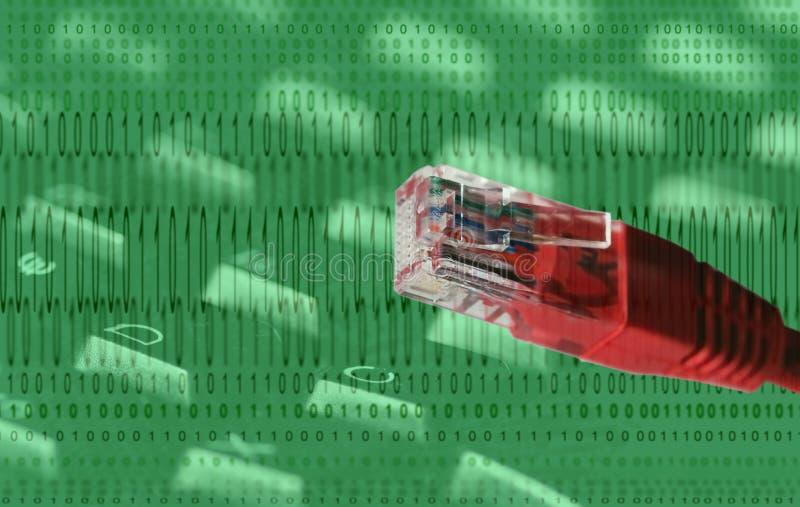 kablowego kodu internety ilustracja wektor