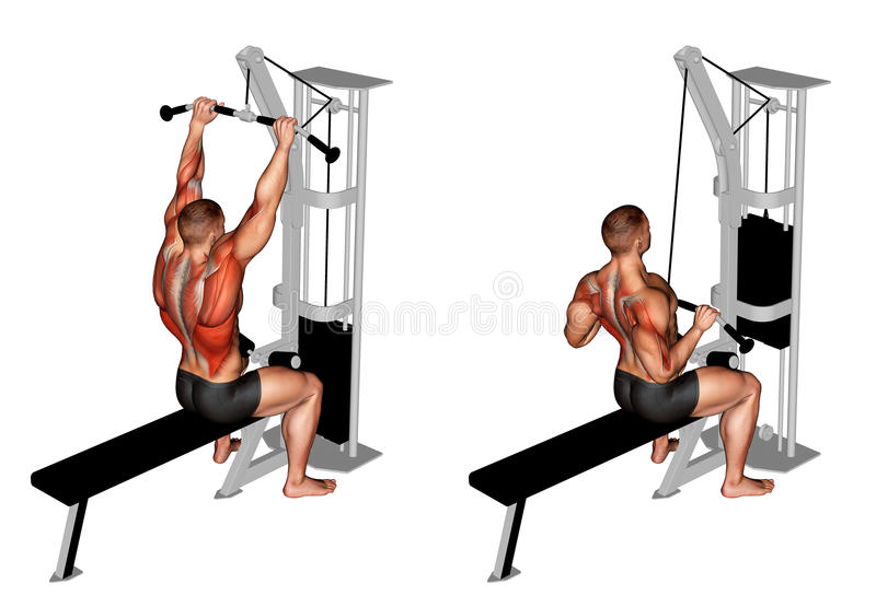 _ Kablowy Prętowy Lateral Pulldown royalty ilustracja