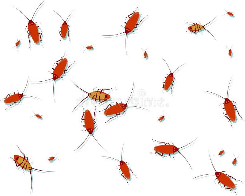 kackerlacka royaltyfri illustrationer
