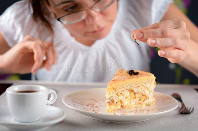Kackerlackan tafsar foten i en platta Kackerlacka i köket Kvinnan grundar tafsa av krypet, i att äta Kackerlackafot royaltyfri bild
