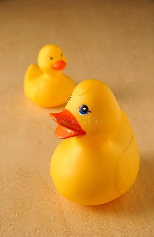 kaczek zabawki zdjęcia stock