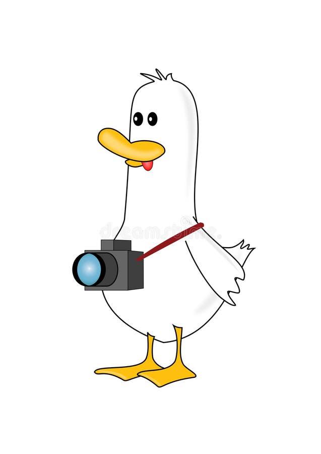 kaczka fotograf ilustracja wektor