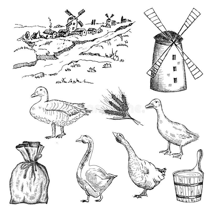 Kaczka i gąska ilustracji