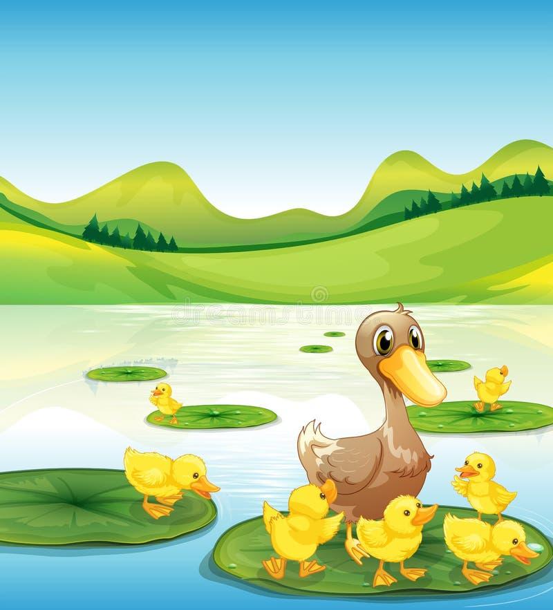 Kaczka i jej kaczątka przy stawem ilustracja wektor