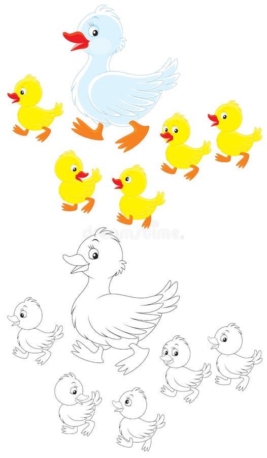 Kaczka i kaczątka ilustracji