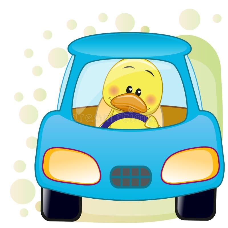 Kaczka w samochodzie royalty ilustracja