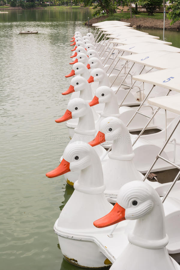 Kaczki łódź obrazy royalty free
