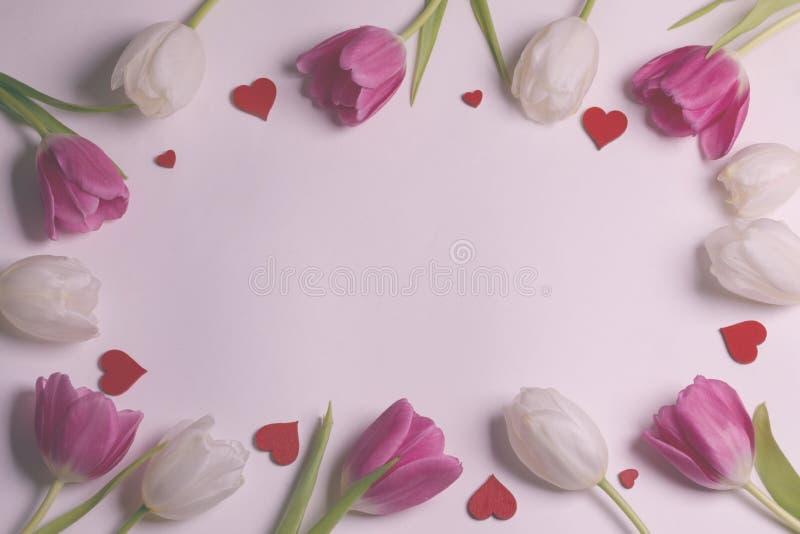 Kader gemaakt van kleurrijke tulpen royalty-vrije stock foto