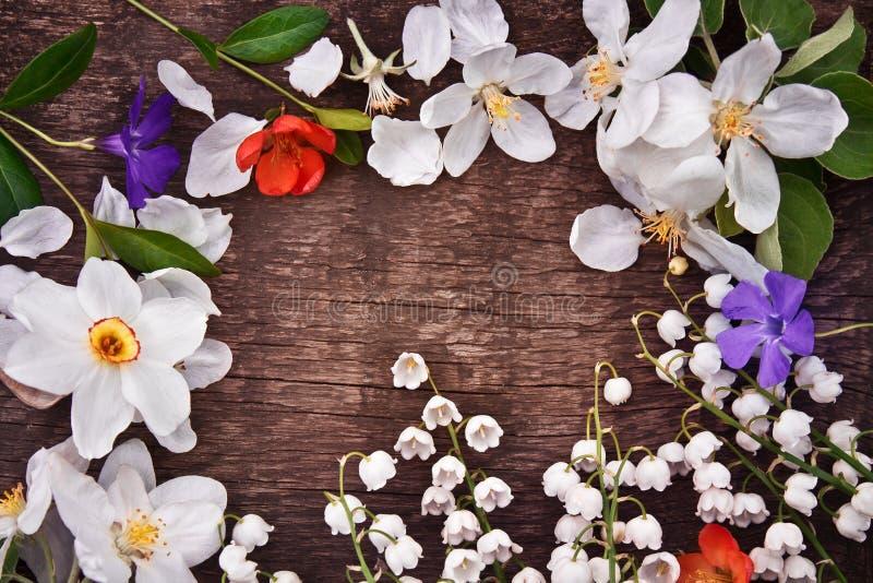 Download Kader van de lentebloemen stock afbeelding. Afbeelding bestaande uit grens - 54076877