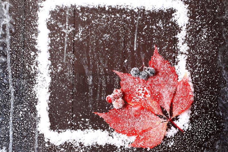 Kader van de sneeuw met een rood blad stock afbeeldingen
