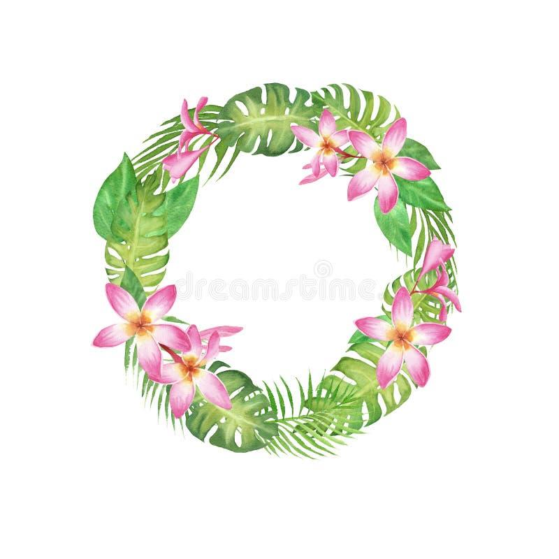 Kader van de waterverf het tropische kroon met monstera, palmbladeren en bloemfrangipani die op wit wordt geïsoleerd royalty-vrije illustratie