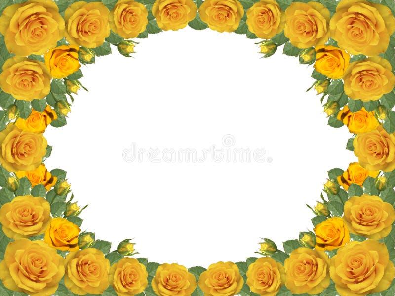 Kader van gele rozen op een transparante achtergrond stock illustratie
