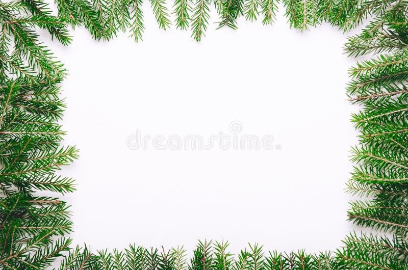 Kader van groene stekelige jonge Kerstboomtakken op witte achtergrond Exemplaar ruimte, hoogste mening royalty-vrije stock afbeeldingen