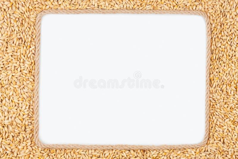 Kader van kabel met gerst wordt gemaakt die op een witte achtergrond liggen die stock afbeeldingen