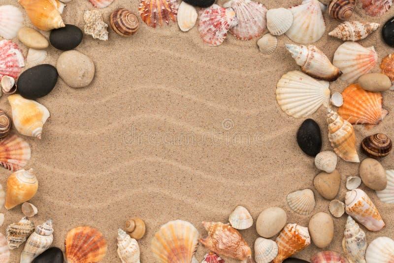 Kader van overzeese shells en stenen wordt gemaakt die op duinen liggen dat royalty-vrije stock afbeelding