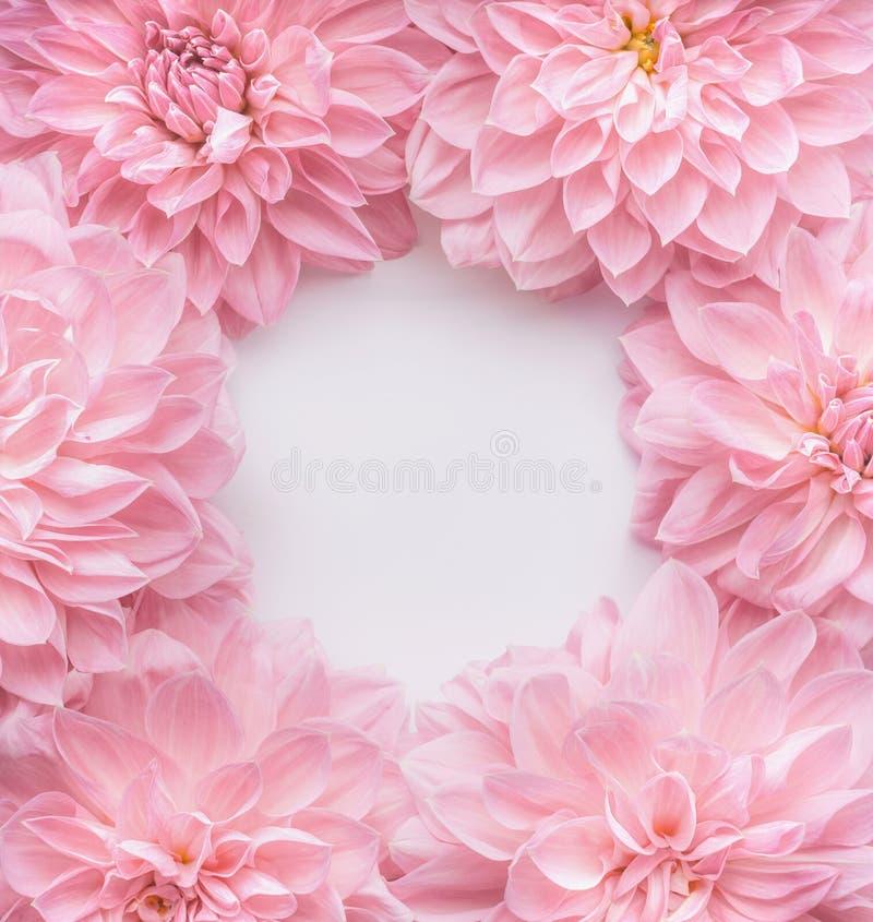 Kader van pastelkleur het roze bloemen, hoogste mening Lay-out of groetkaart voor Moedersdag, huwelijk of gelukkige gebeurtenis royalty-vrije stock afbeeldingen