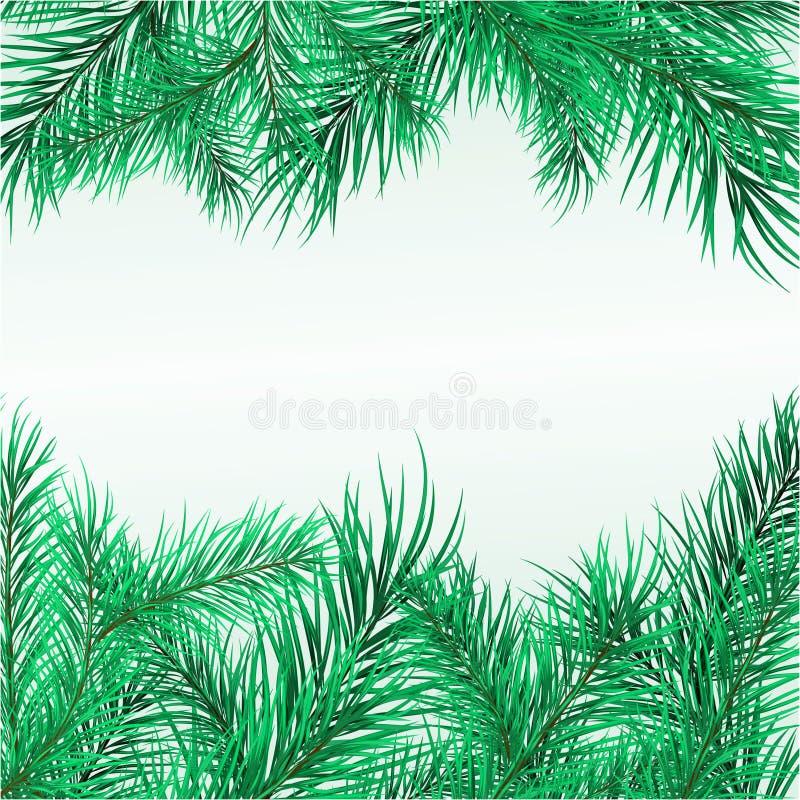 Kader van pijnboomtakken vector illustratie
