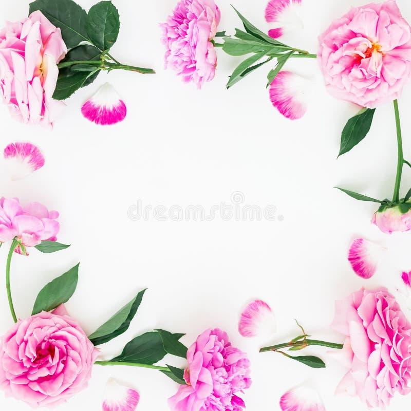 Kader van roze pioenbloemen, bladeren en bloemblaadjes wordt gemaakt met ruimte voor tekst op witte achtergrond die Vlak leg, hoo stock afbeeldingen