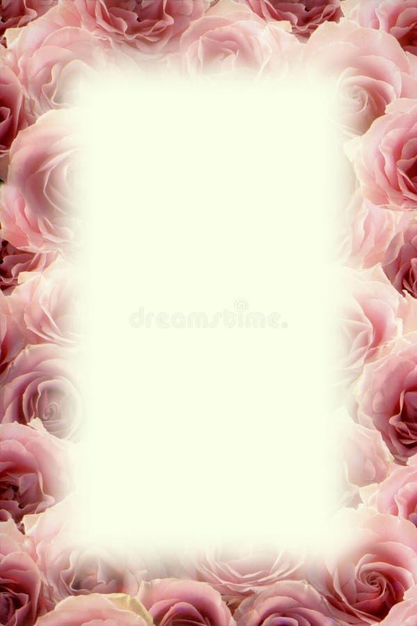 Kader van roze rozen royalty-vrije illustratie