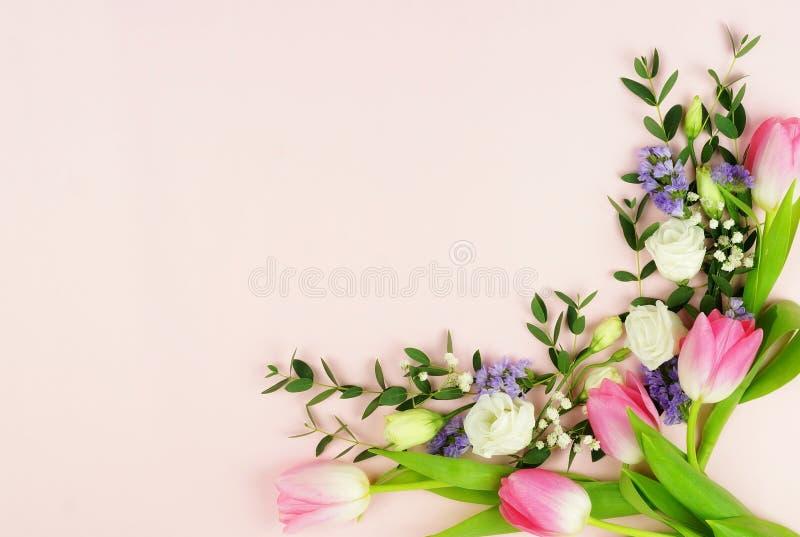 Kader van roze tulpen en eucalyptustakken royalty-vrije stock afbeeldingen