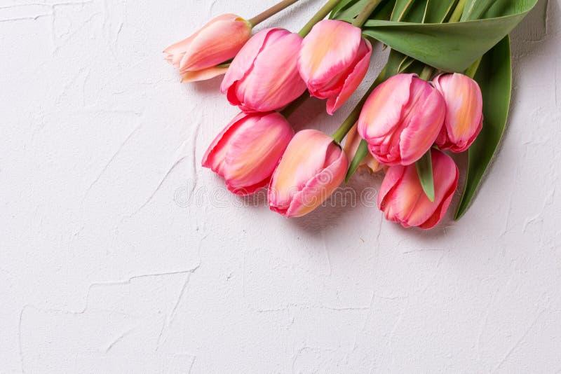 Kader van roze tulpenbloemen op geweven achtergrond royalty-vrije stock afbeeldingen