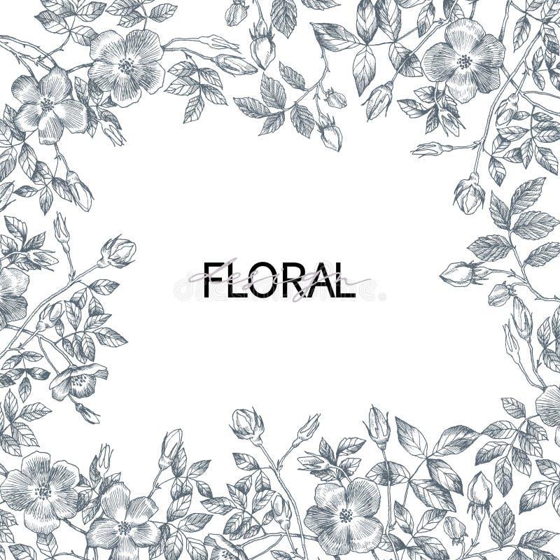 Kader van tuin het tedere Engelse rozen Uitstekende botanische hand getrokken illustratie De lentebloemen rond van plaats voor te vector illustratie
