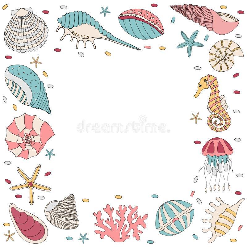 Kader van zeeschelp vector illustratie