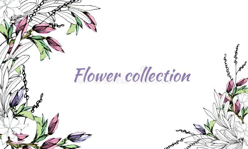 Kader voor tekst met de lentebloemen Reeks hand-drawn multicolored en contourkleuren Vector illustratie stock illustratie