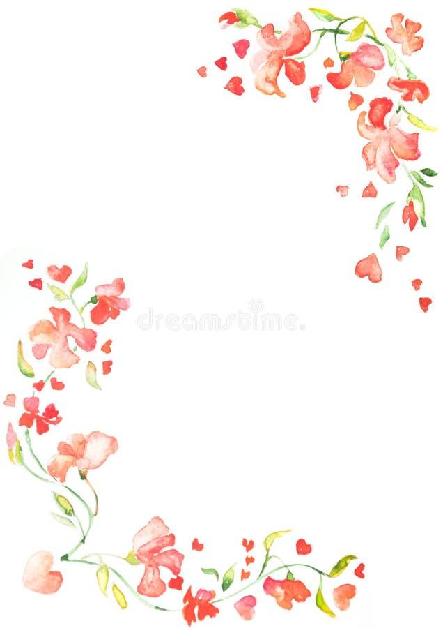 Kader of waterverf rode bloeiende bloemen met ruimte voor tekst stock illustratie