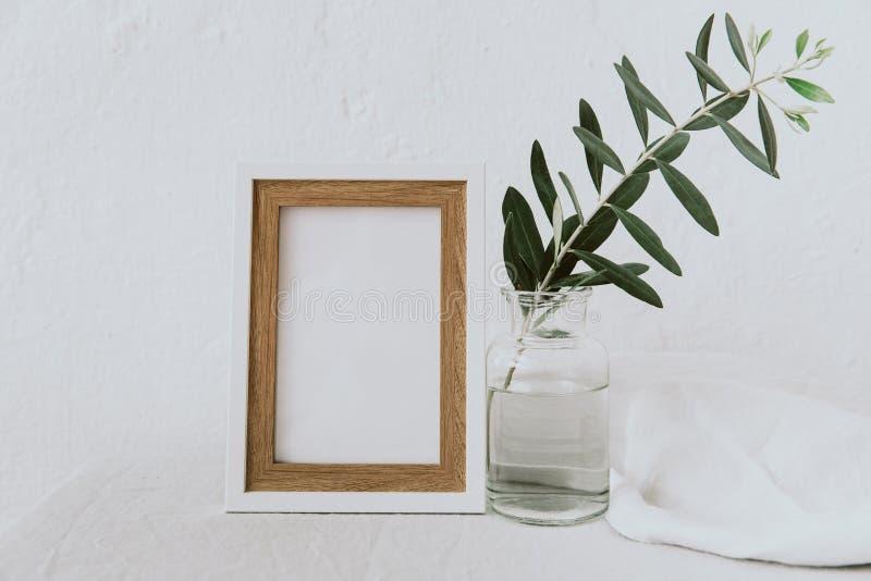 Kadermodel, olijftak in glasfles, waterkruik, gestileerd minimalistisch schoon beeld royalty-vrije stock afbeeldingen