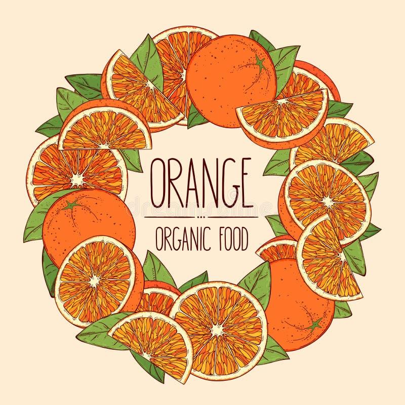Kadersinaasappelen stock illustratie