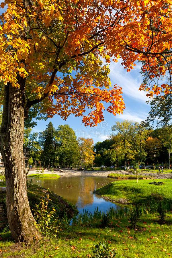 Kadriorg Park. Tallinn, Estland stockbilder