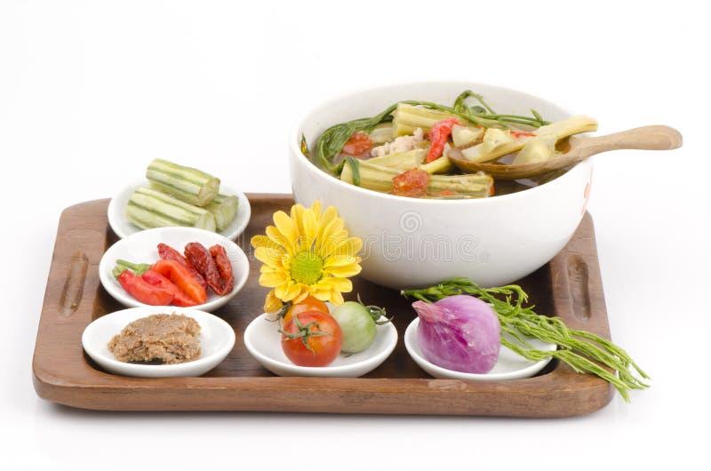 Kaeng Marum (thailändischer Nordname), Moringa-Curry mit Schweinefleisch (Moringa.oleifera-Flucht.) lizenzfreie stockfotografie