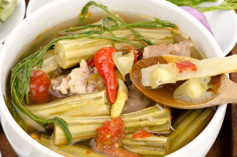 Kaeng Marum (thailändischer Nordname), Moringa-Curry mit Schweinefleisch (Moringa.oleifera-Flucht.) lizenzfreies stockfoto