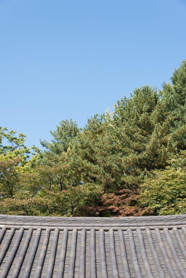 Kafelkowy dach Koreańska tradycyjna architektura obrazy royalty free