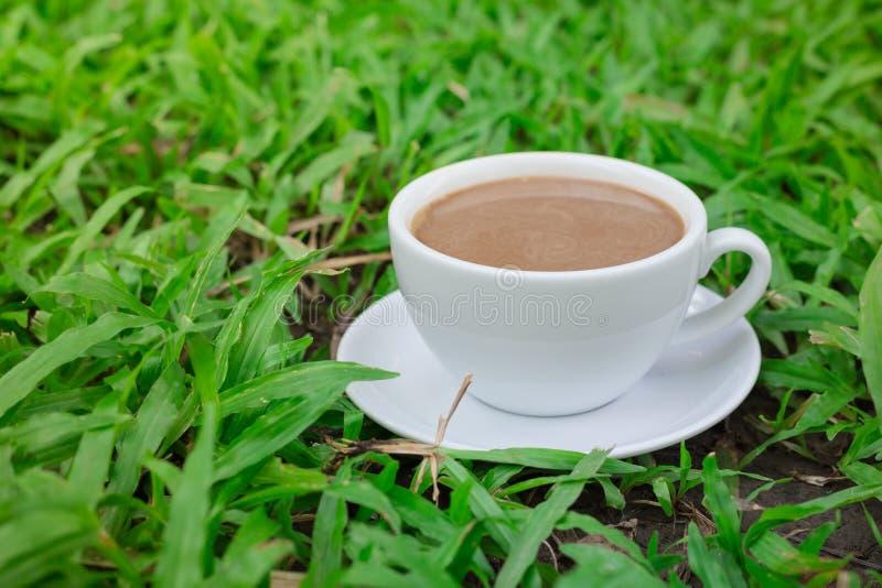 kaffe över gräset i trädgården royaltyfri fotografi