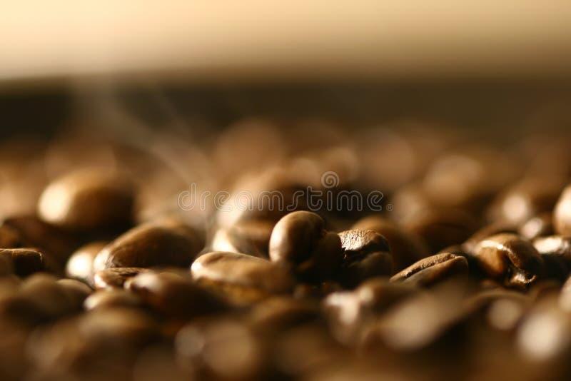 Download Kaffe arkivfoto. Bild av cafe, java, koffein, person, råna - 3544958