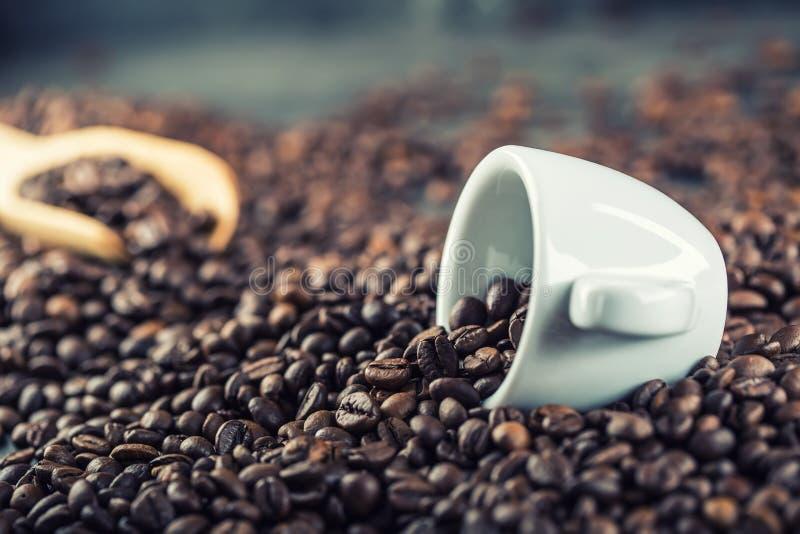 Kaffe bönor frukosterar ideal isolerad makro för kaffe över white Kaffe kuper mycket av kaffebönor tonad bild royaltyfri fotografi
