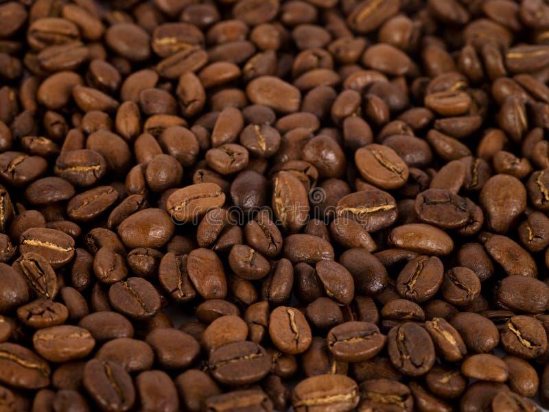 Kaffe Beans/1 royaltyfri fotografi