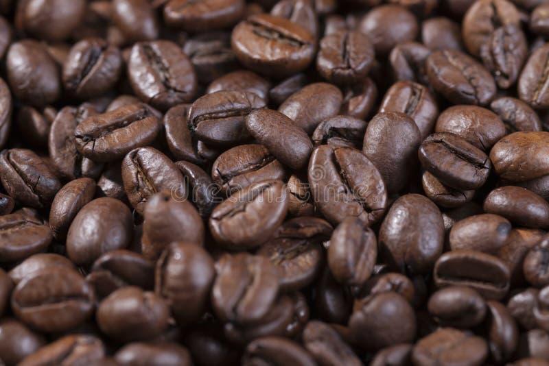 kaffe för bönabrownclose upp royaltyfri fotografi